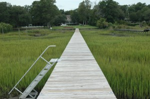 chemical mildew removal and dock cleaning