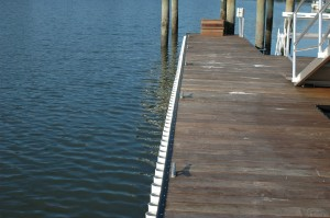 ipe floating dock with black rub rail and white wave guard